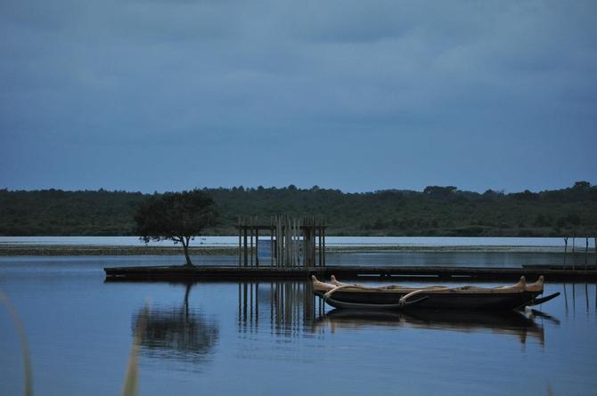 le-lac-et-la-nature-riche-dans-les-landes