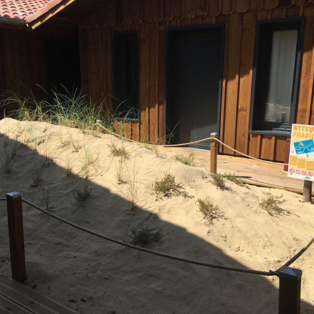 reconstitution-dune-nature-surf-camp